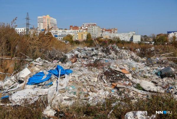 Министерство начинает процедуру реквизиции участков под свалкой отходов на территории СНТ «Родник»
